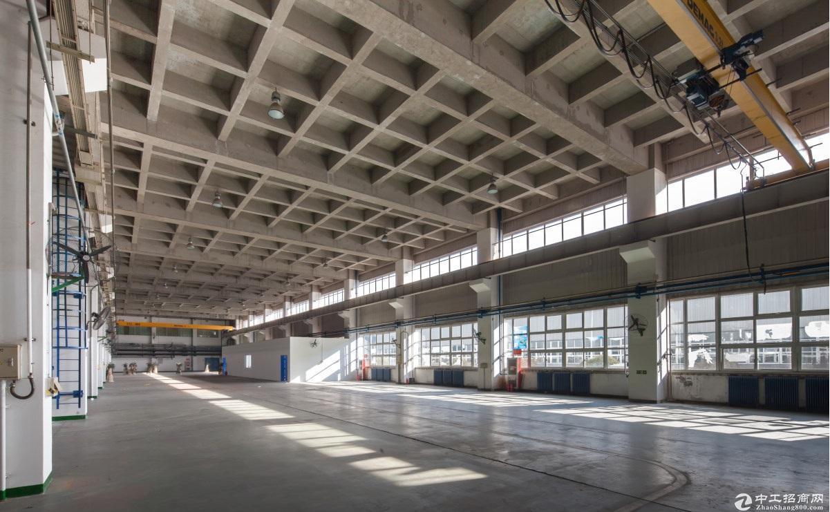 浙江稀缺单层钢结构厂房,层高10米,税收要求无,开发商50年产权