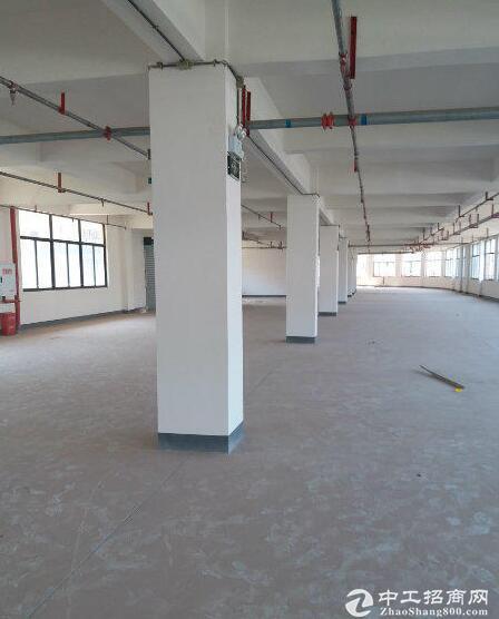 出租五里坪枢纽站附近新修厂房800平米