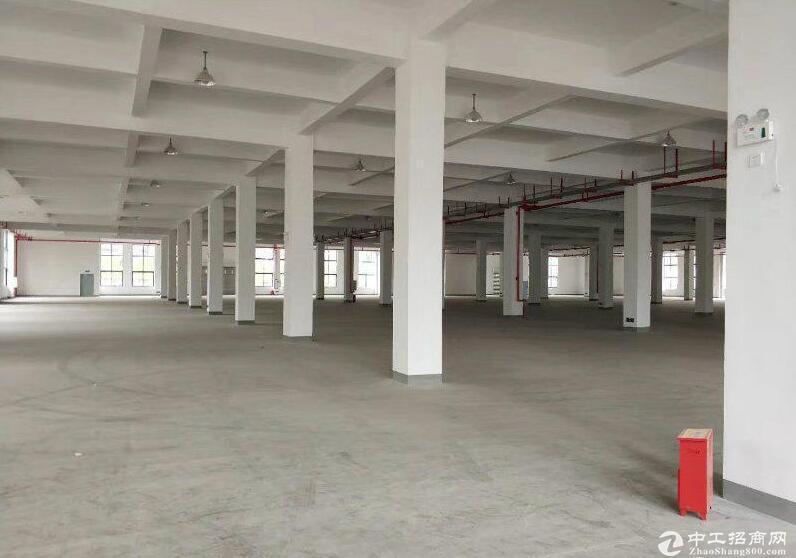 出租北碚蔡家工业园精装修一楼厂房1600平米
