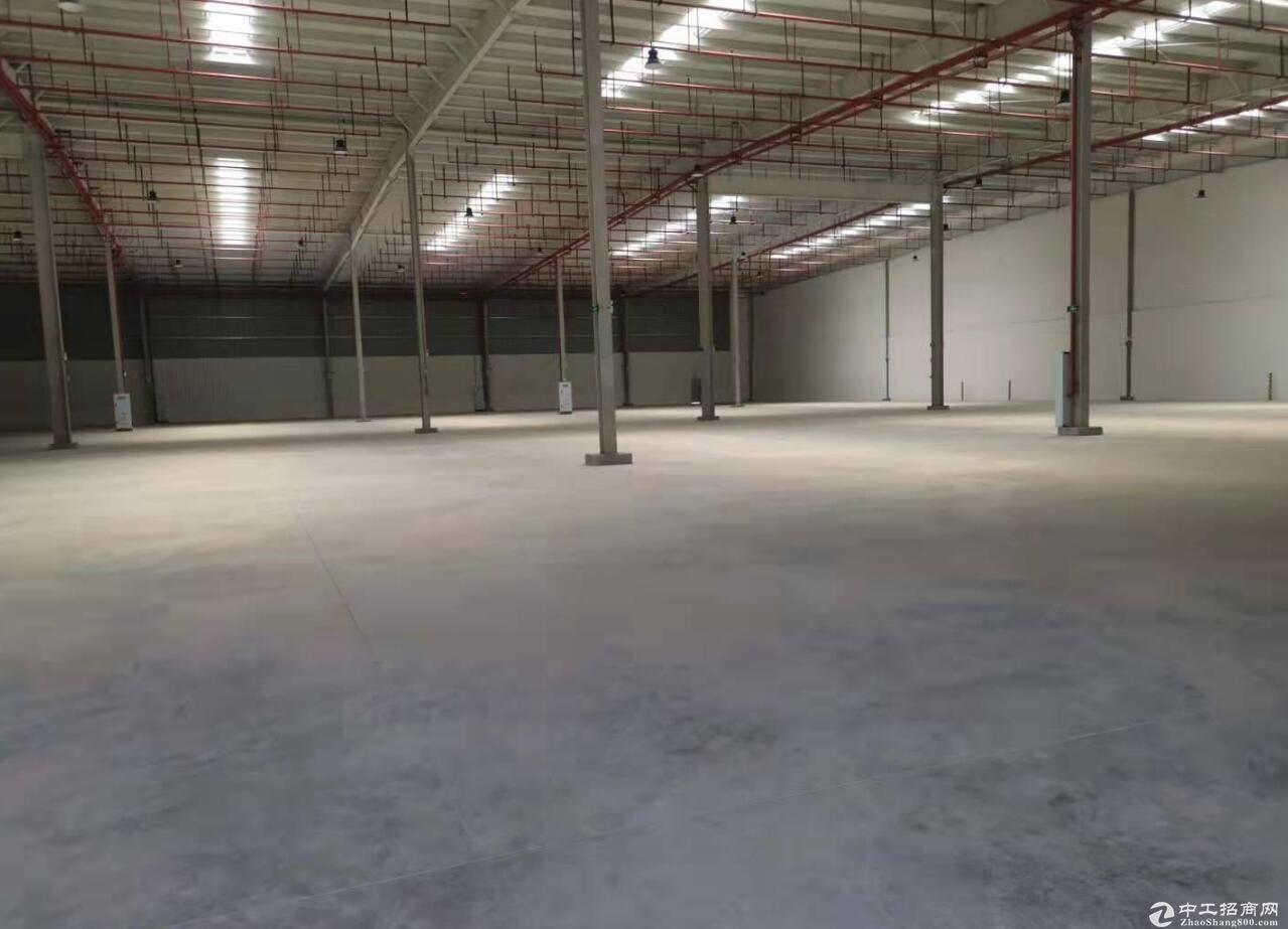 北碚同兴2000平厂房独门独院厂房 可分租