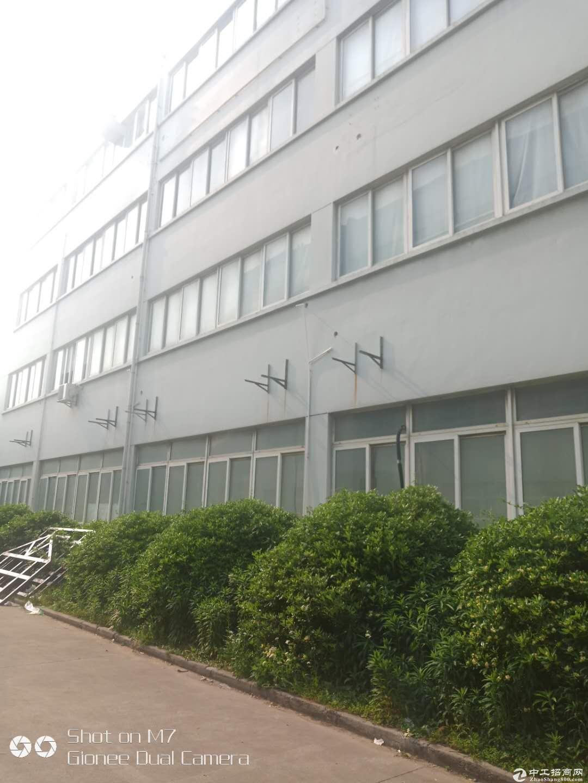 张江科学城南区6000平104厂房1.4元出租