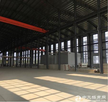 长葛魏武路和华夏大道连接处,2000㎡钢构万博app官方下载出租
