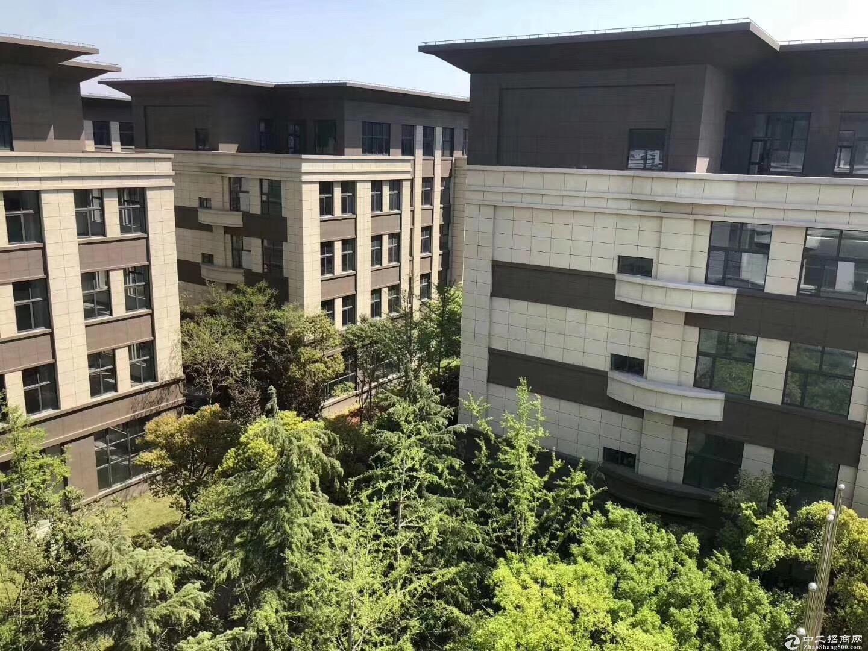 售肥西核心地段,8米层高,50年产权,独栋框架厂房
