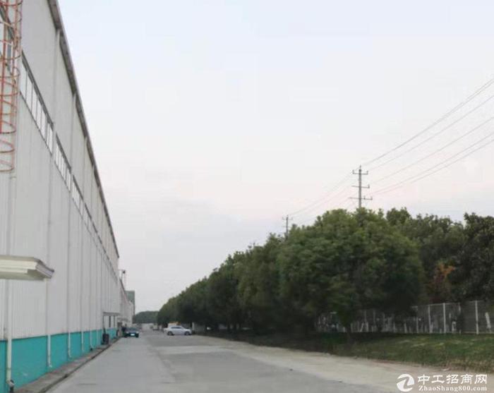 25800平米丙类仓库出租 可分租