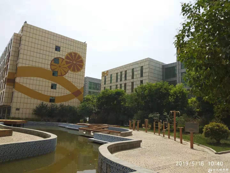 出售邯郸经开区国营双创科技园区厂房