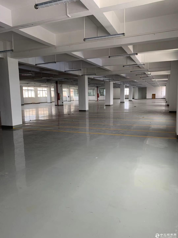 东升单一层厂房两栋共5800方分租也可独门独院