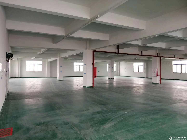 古镇海州标准厂房5层8000方有电梯可分租