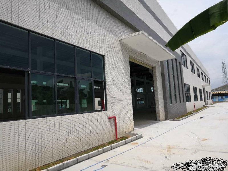 中山市港口镇靓新花园式厂房7780平方米出租