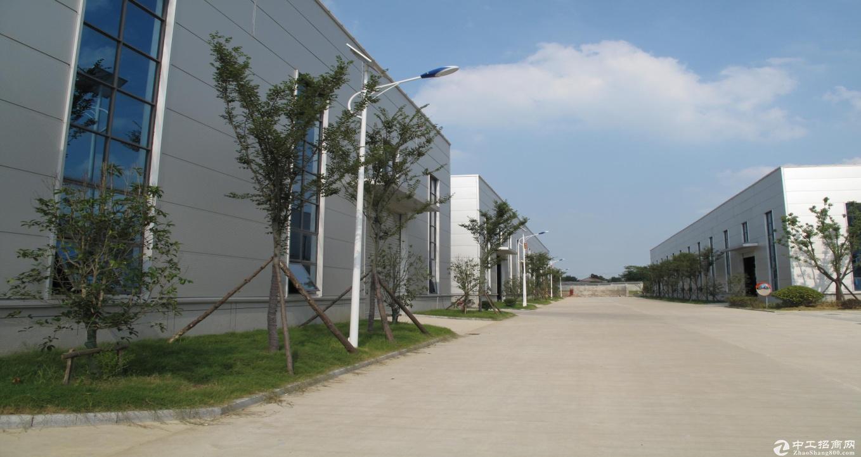 马鞍山博望区- 出租钢结构厂房1200-30000平(高新技术开发区)-图3