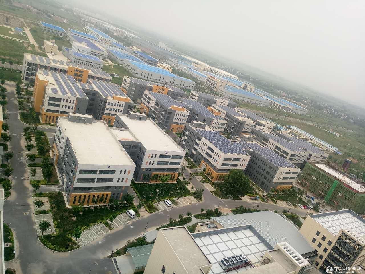 西安临潼区/标准厂房出租/政府园区-图3