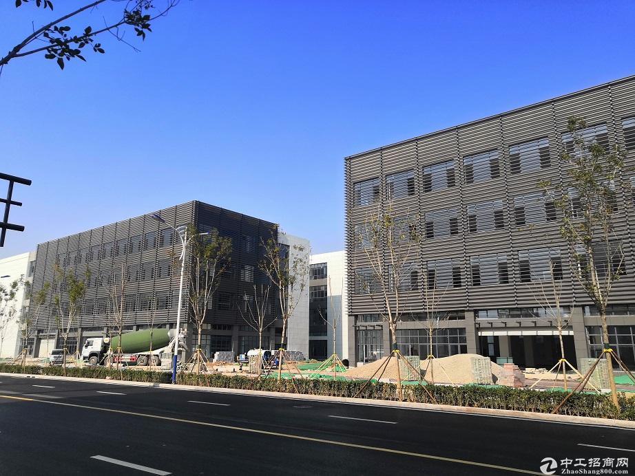 50年产权 工业园区现房 可环评 带产权 食堂公寓办公-图5