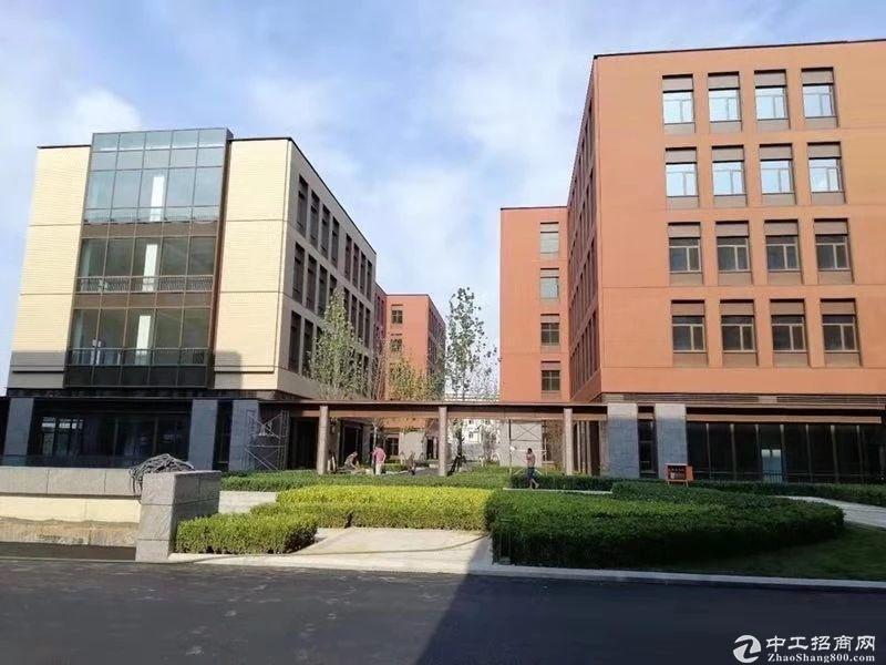 业主直租独栋厂房研发楼 多种面积可注册环评生产研发-图4