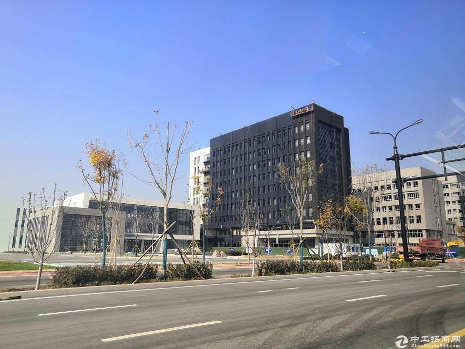 50年产权工业园区厂房 可分割 公寓食堂办公 百强为邻-图3