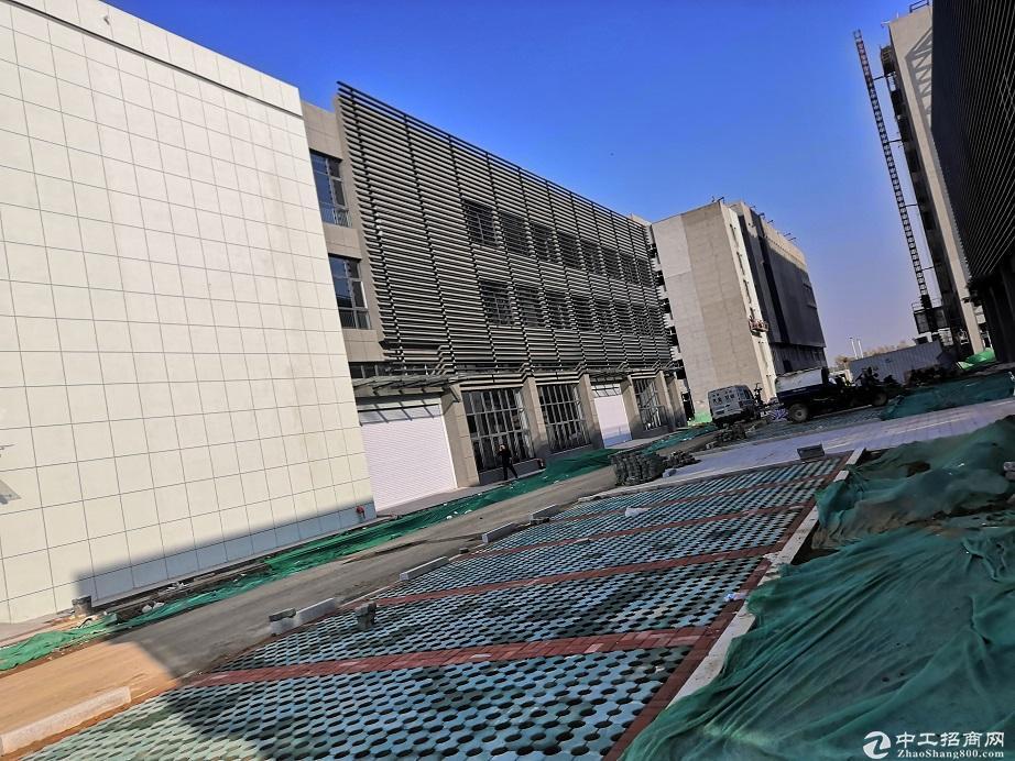 50年产权工业园区厂房 可分割 公寓食堂办公 百强为邻-图4