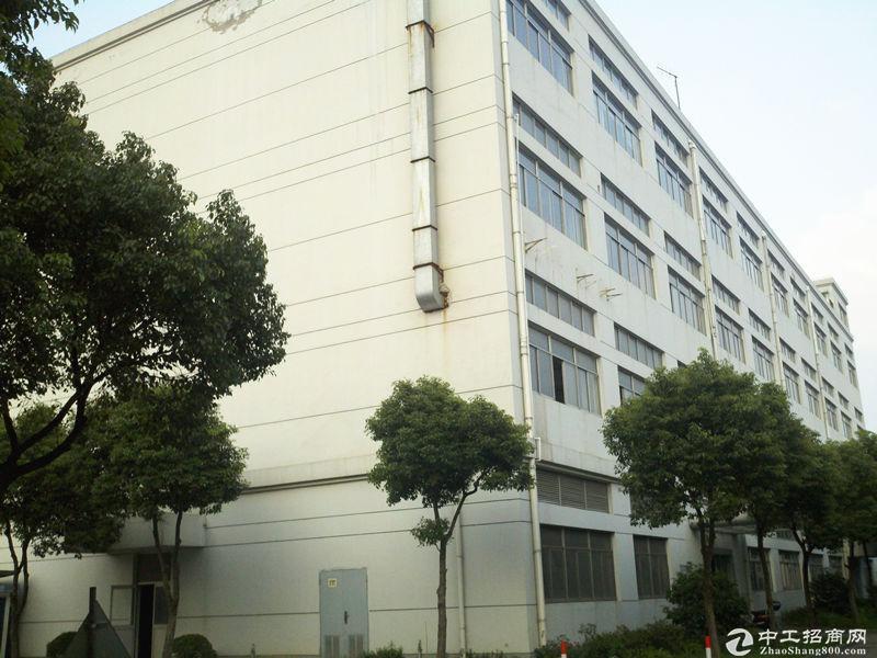 北蔡近地铁300平500平办公仓库出租