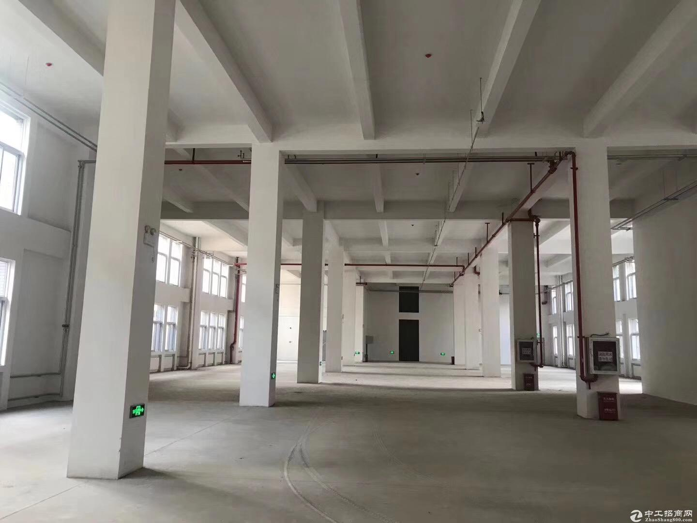 生物医药/医疗器械/创新化药/现代医药  研发厂房 整栋2400平米起-图4