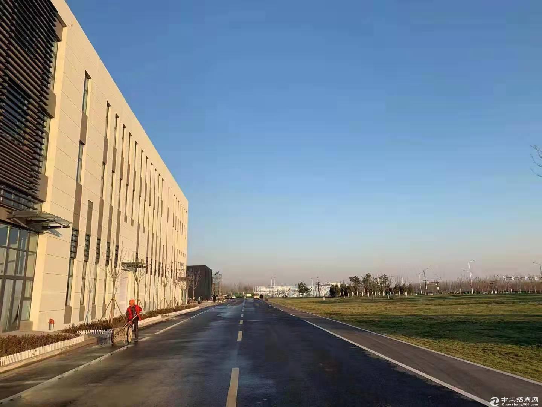 临机场标准工业园区 50年产权 百强德企 食堂宿舍办公楼