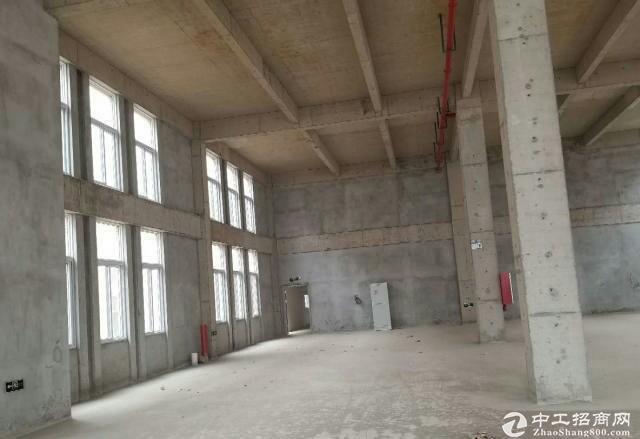 出售个人全新厂房仓库写字楼栖霞区尧化门新港开发区