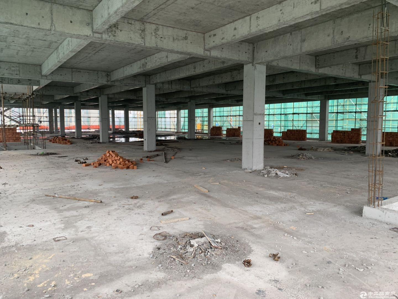 鄞州全新厂房出售,开发商开发,首付三成起