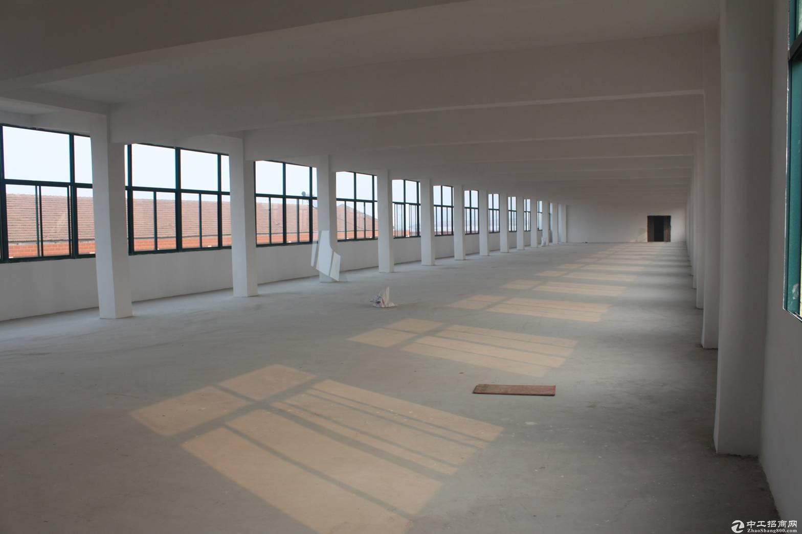 浦东合庆东川公路全单层700平可分租层高9米配场地