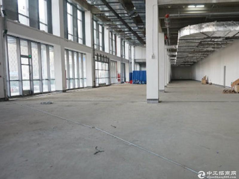 自贸区金桥一楼稀缺小面积300平米可做贸易电商检测实验