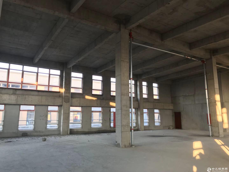 上市房企 中南高科 1000-8000平 现房厂房 对外出售