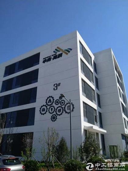 出售12米高的厂房 框架结构