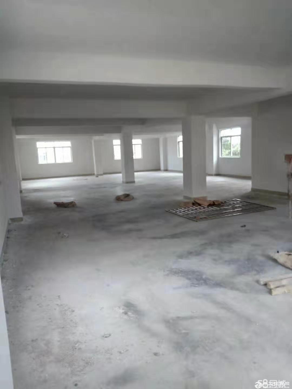 【横栏四沙】全新电梯厂房,面积320平方