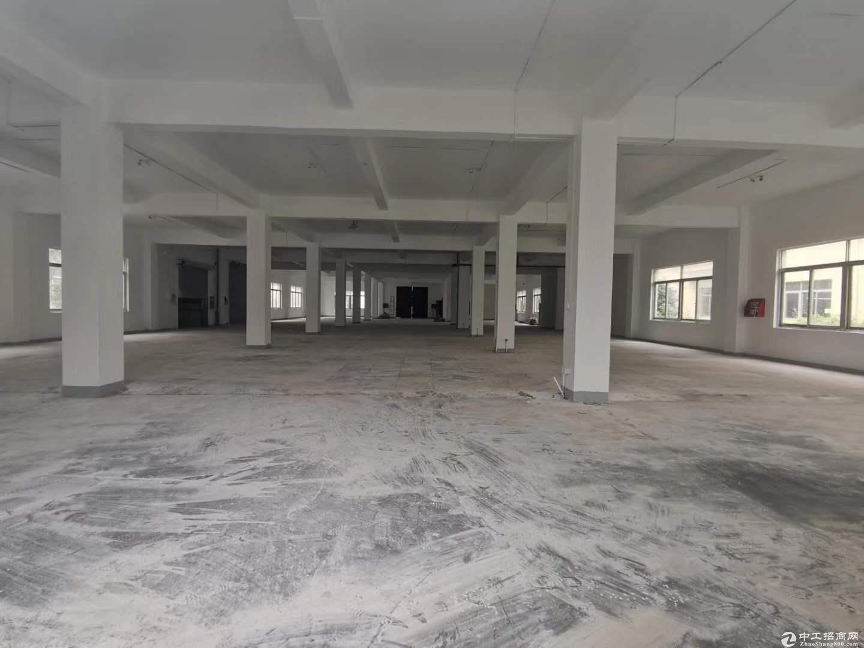 佘山工业区独栋标准厂房出售
