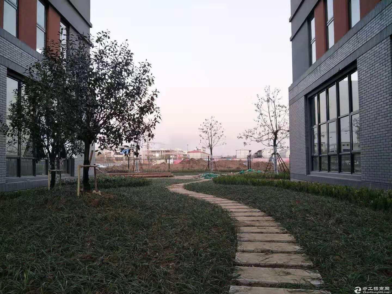 品质园区 2800元每平米起 两成首付 租金即月供 面积全 有房产证