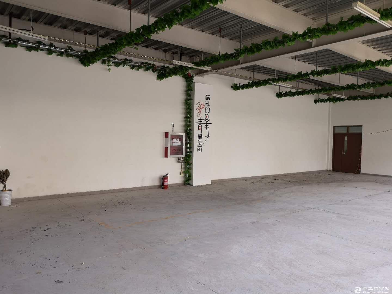 开发区一层独立门头厂房 978平无地下水电齐全