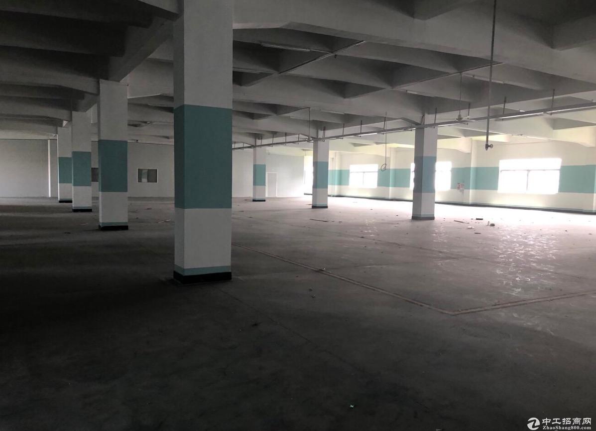 古二工业区附近楼上标准1500方厂房,可分租