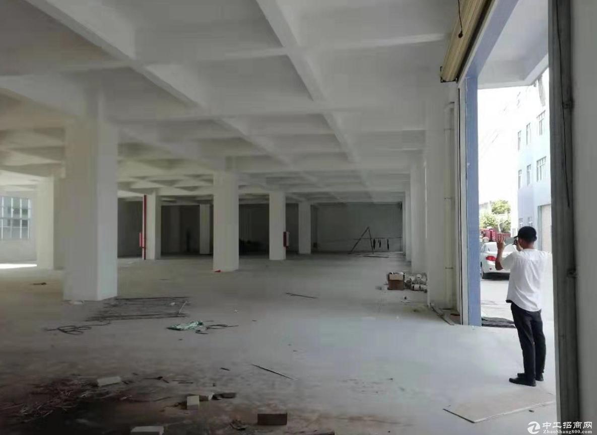 濠头附近一楼600方厂房仓库出租  租金便宜-图3