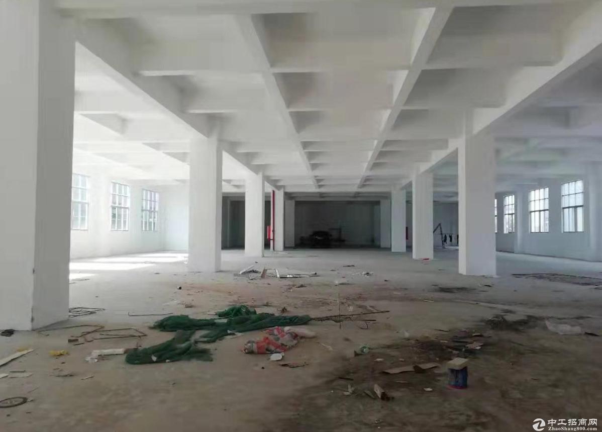 濠头附近一楼600方厂房仓库出租  租金便宜-图4
