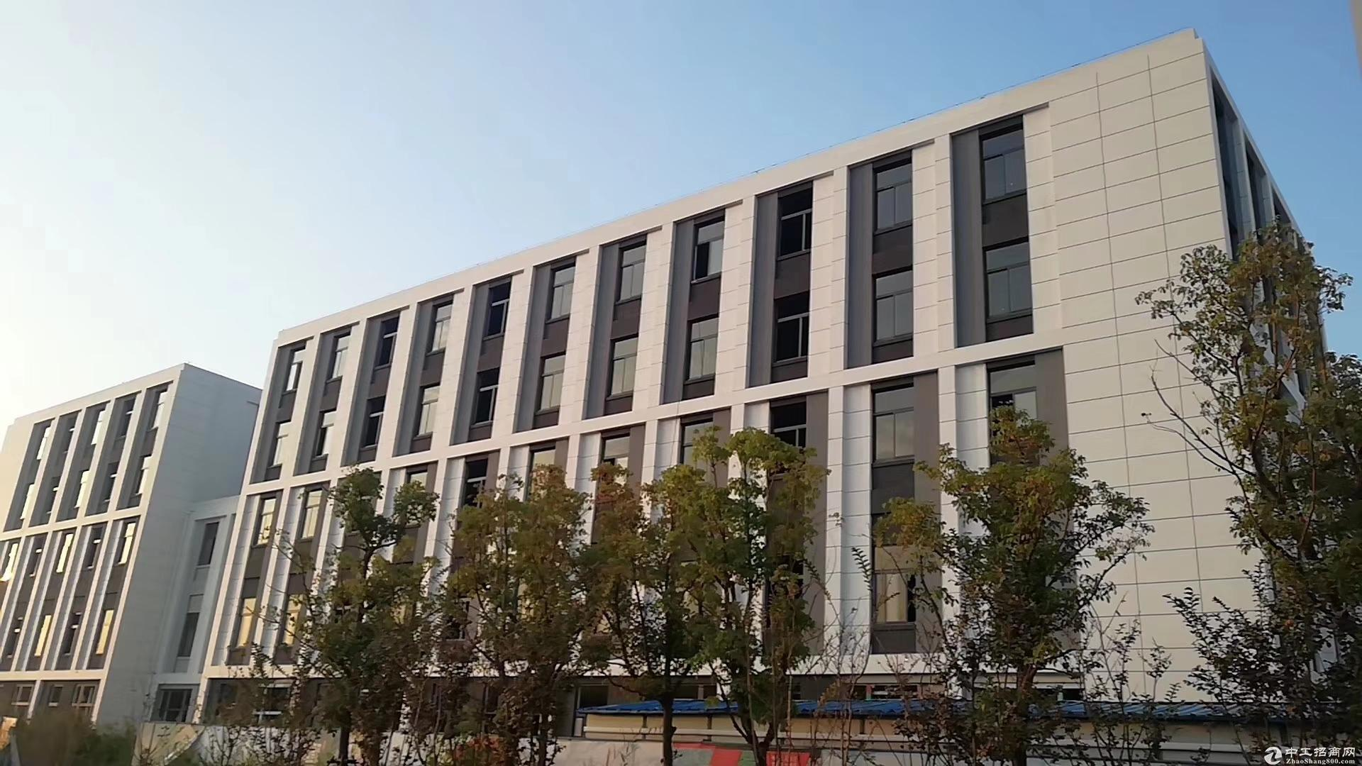 苏州木渎500平起 全新标准厂房出租 花园式厂房形象好 客货梯均有