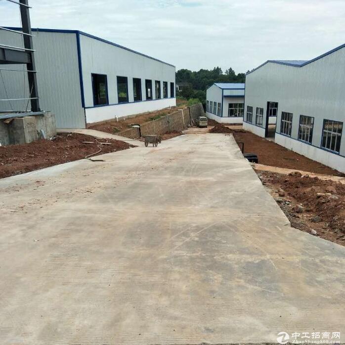 春华标准钢架结构厂房出租