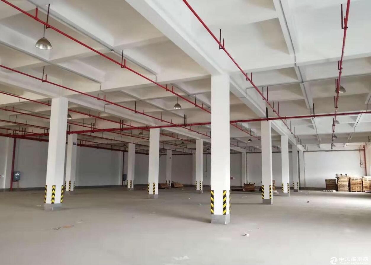(出租) 星沙经开区丙二类仓库一千,二千,四千至一万平米