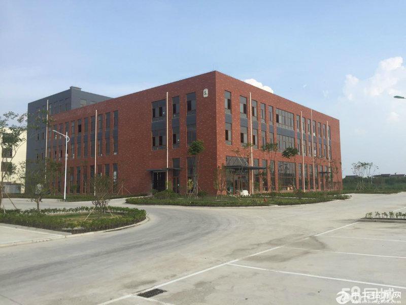 出售中南高科全新标准厂房层高8.1米可按揭非中介