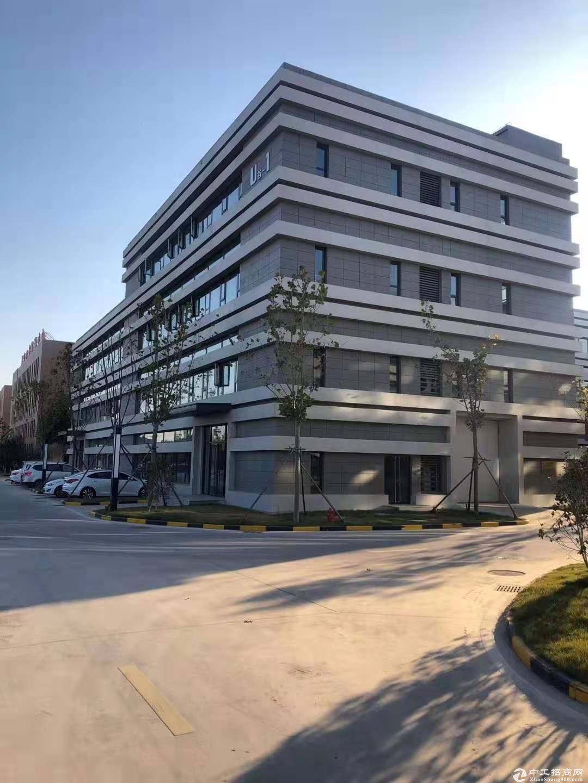 黄岛 2000㎡ 厂房出售层高7.2米 配电300KVA 可环评-图2