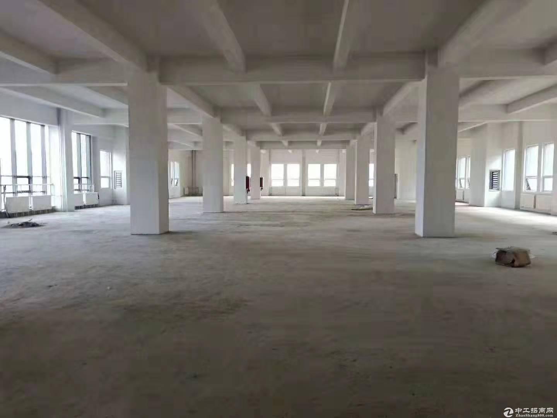 黄岛 2000㎡ 厂房出售层高7.2米 配电300KVA 可环评-图3