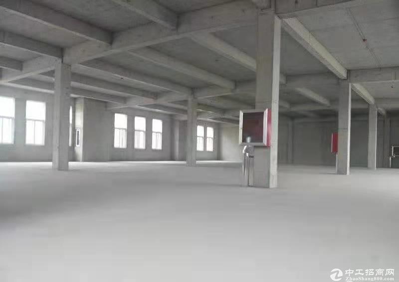 青岛新建大产权优质厂房