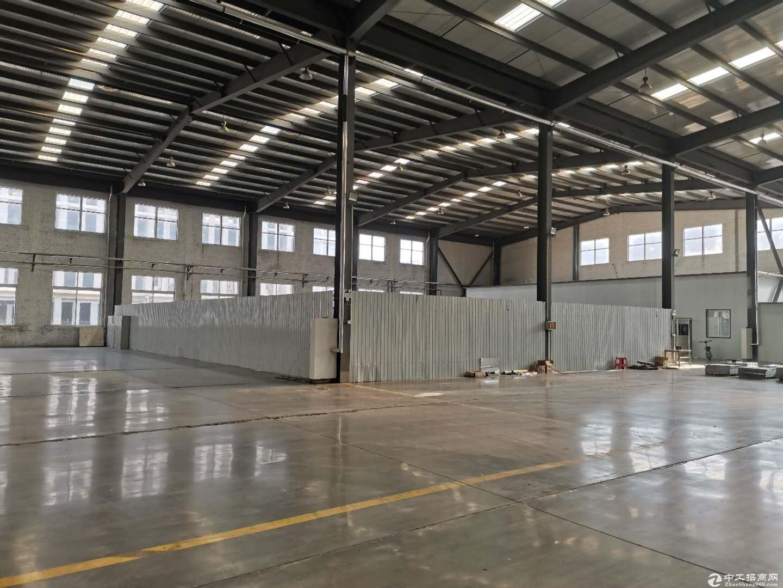 长清大学城800平轻钢结构厂房,现房租赁。-图3