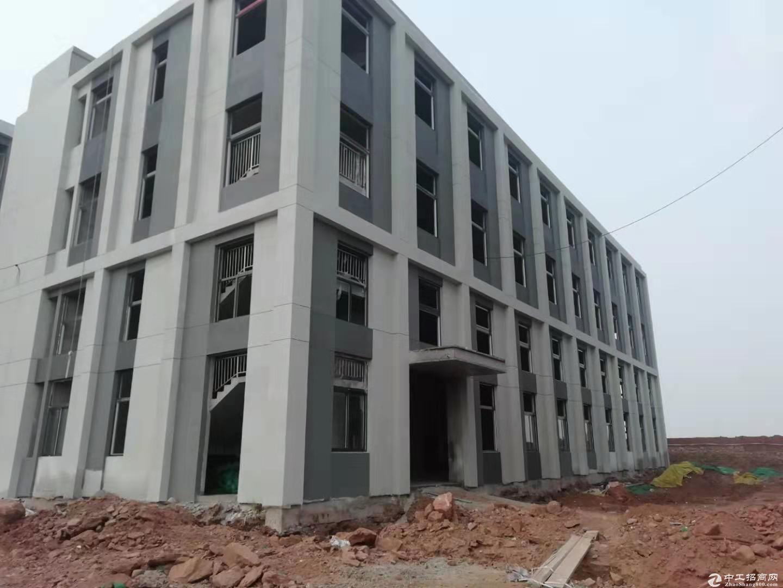 城阳即墨胶州高新区全新双层钢混厂房9米层高500~8000平面积有证有消防图片2