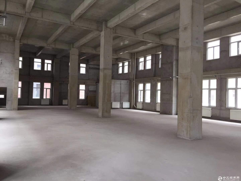 出售厂房,2000㎡大产权,市级园区,能贷款/环评,多行准入-图6