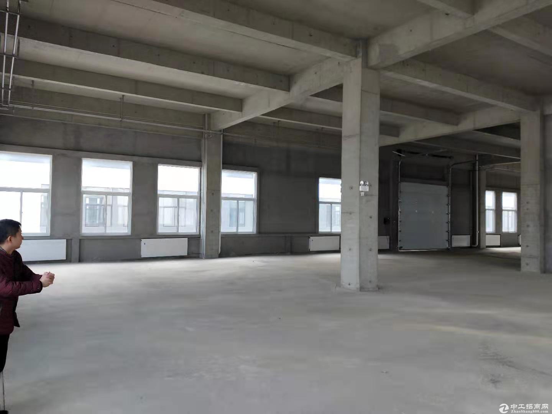 出售4000㎡7.2米厂房,医疗/电子/机械/食品包装/环保等图片3