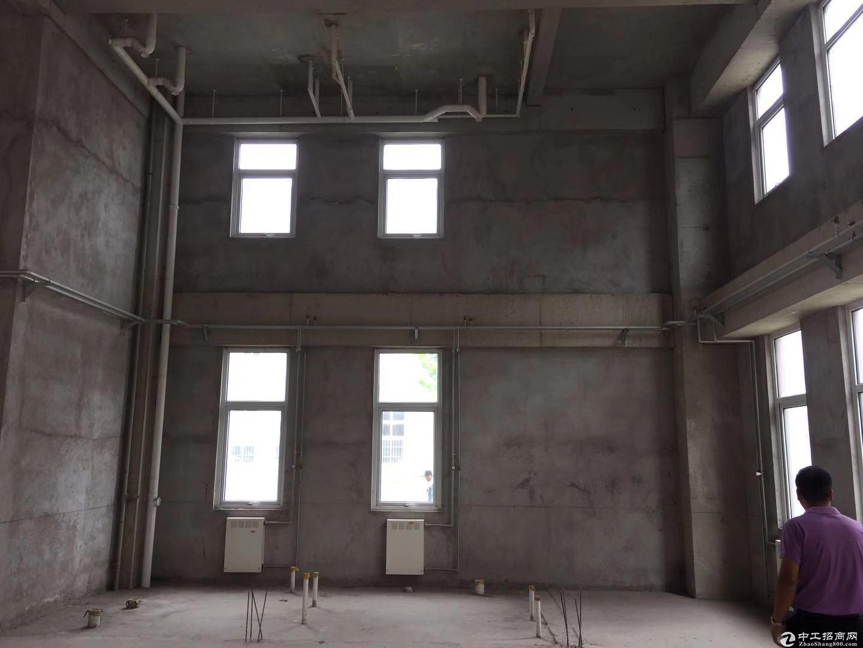 出售4000㎡7.2米厂房,医疗/电子/机械/食品包装/环保等图片8