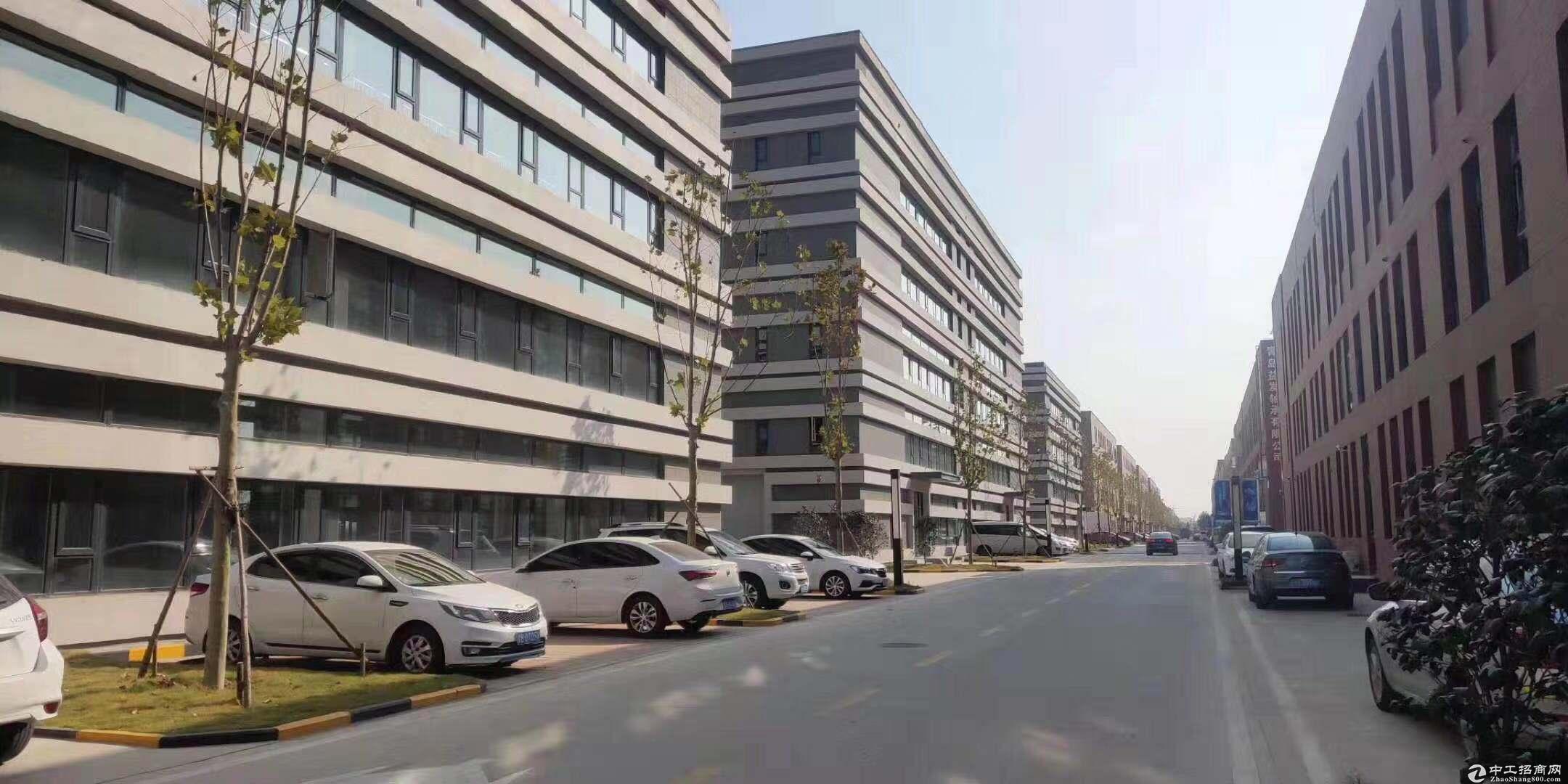 青岛多区域大产权厂房出售-图3