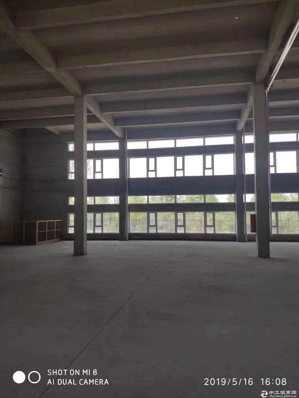 青岛多区域大产权厂房出售-图4