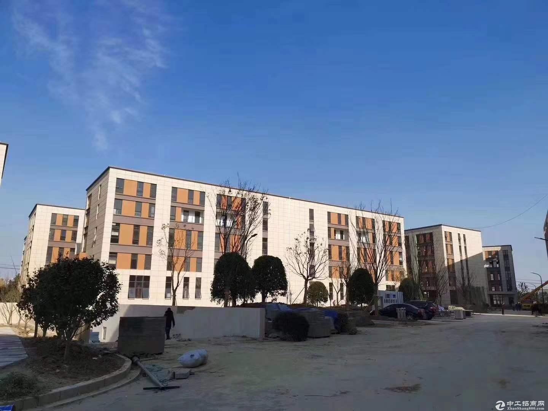 龙江高架旁独栋厂房出售,独立产证。首付低可贷款。