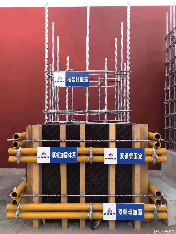 一手标准大产权厂房出售,可按揭8.1米层高